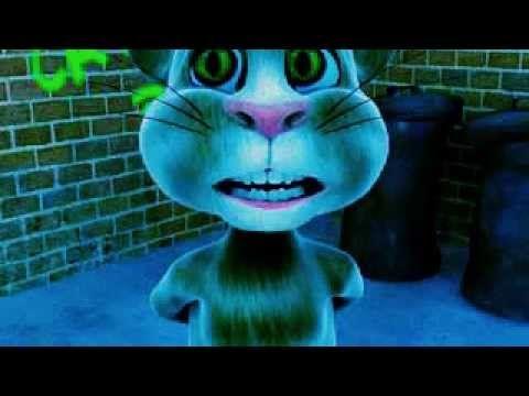 Funny & Cute Cat Cartoon Video