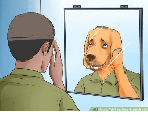 How to Tell if You Have Schizophrenia Meme