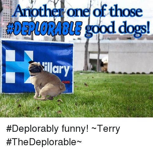 othe one of those od dogs illary Deplorably funny Terry TheDeplorable Meme