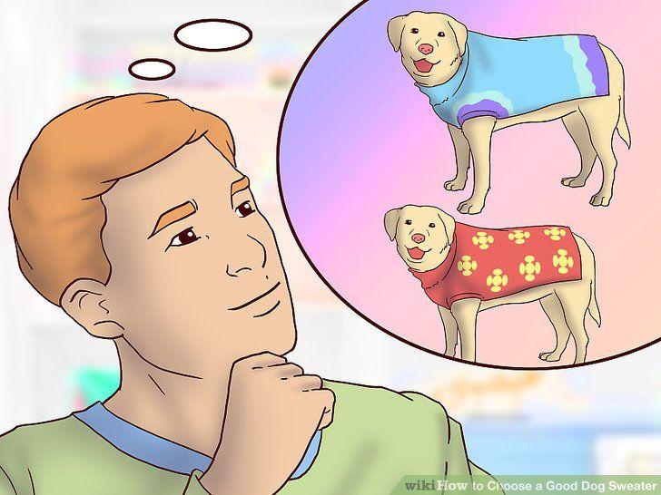 Image titled Choose a Good Dog Sweater Step 7