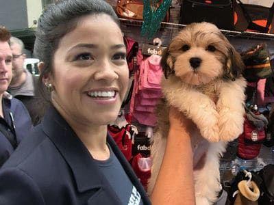 Gina Rodriguez Drops $2 5k Pooch