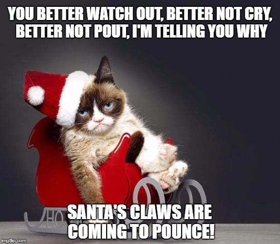 Grumpy Cat Christmas HD
