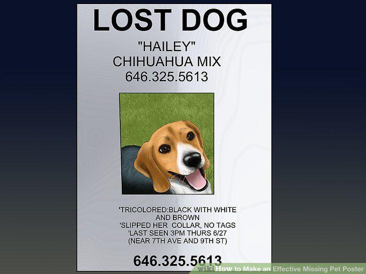 Image titled Make an Effective Missing Pet Poster Step 17