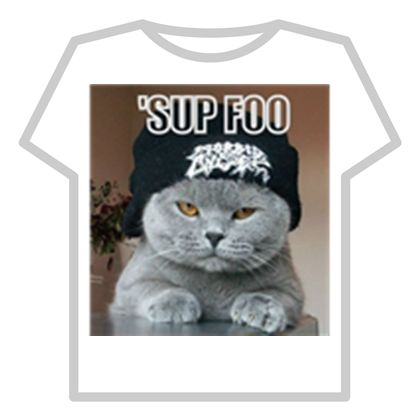 Sup fool cat