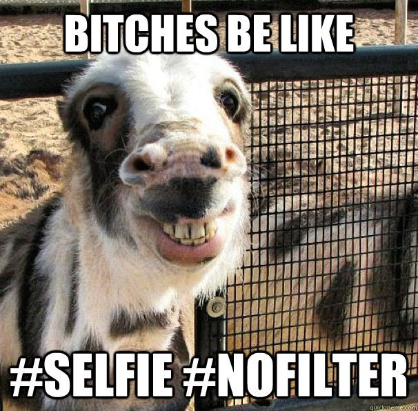 See the Unbelievable Funny Dog Memes Ugly