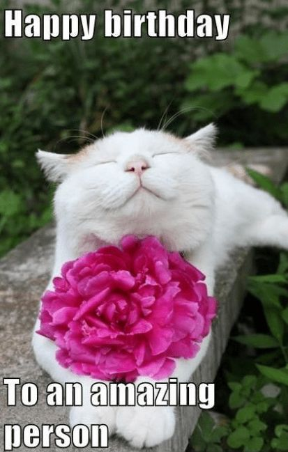 Happy Birthday to an amazing friend