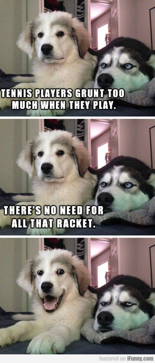 """I swear """" Funny Dad Jokes Funny Puppy Memes"""