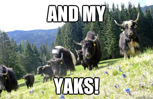 And My YAKS