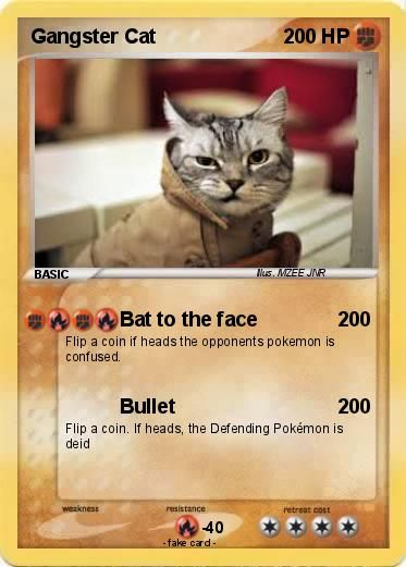 Lolcats Gangster Lol At Funny Cat Memes