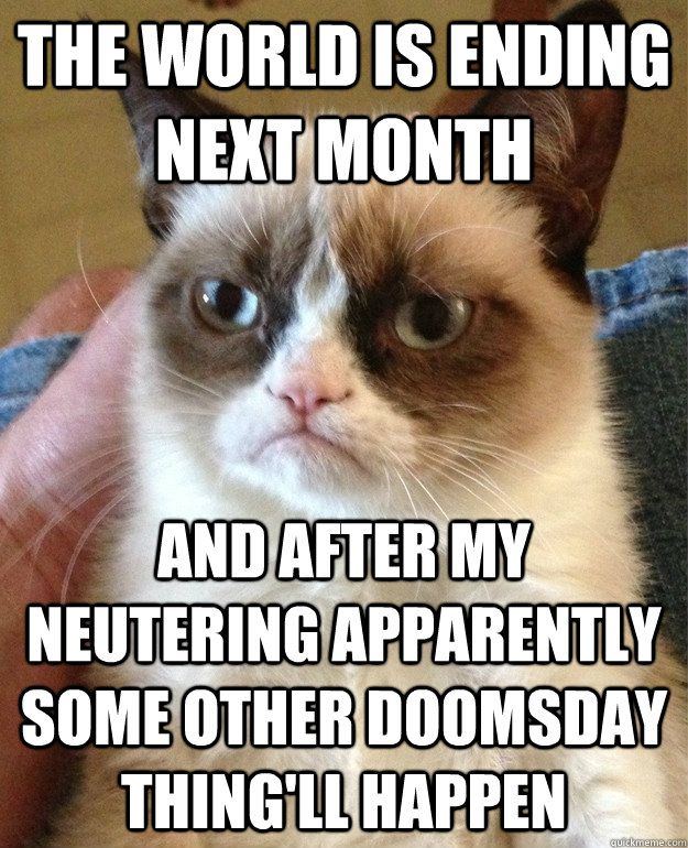 The world is ending next month And after my neutering apparently some other doomsday thing ll happen