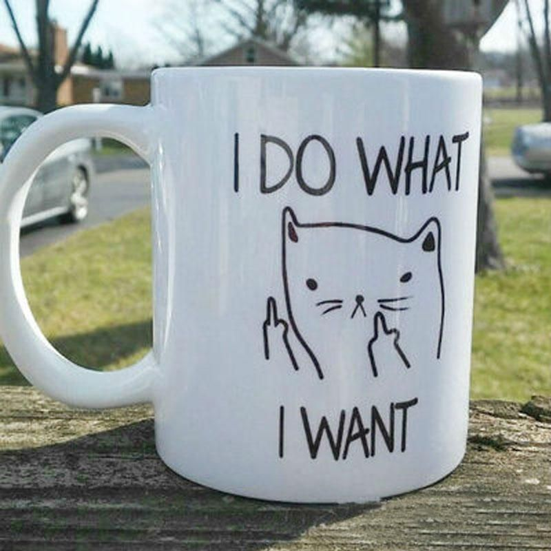 I Do What I Want 300ML Ceramic Funny Cat Coffee Tea Mug Free Shipping