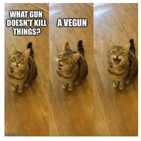FunnyWhat Gun Doesn t Kill Things =oD