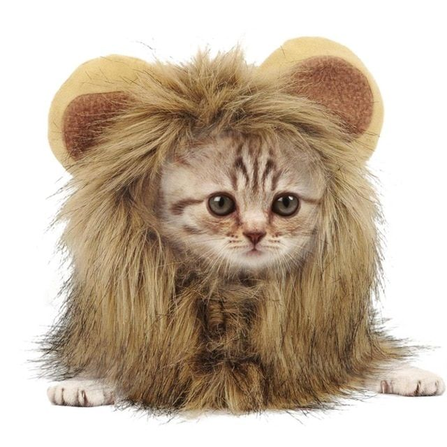 Hot Fashionable Fluffy Cat Cap Costume Lion Head False Ear Figure Changing Brand New Pet Funny Hat Autumn Winter Pet Cosplay