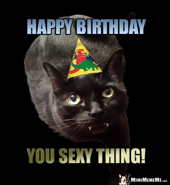 Black Party Cat Says Happy Birthday You y Thing