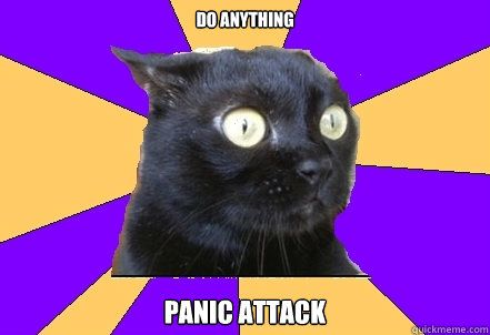 Take the Fascinating Funny Panic attack Cat Memes