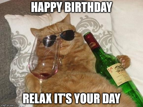 Funny Cat Birthday HAPPY BIRTHDAY RELAX IT S YOUR DAY
