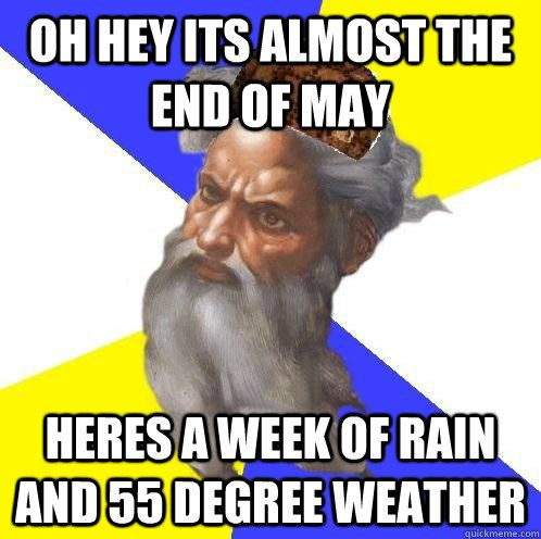 Take the Fresh Funny Animal In Rain Memes