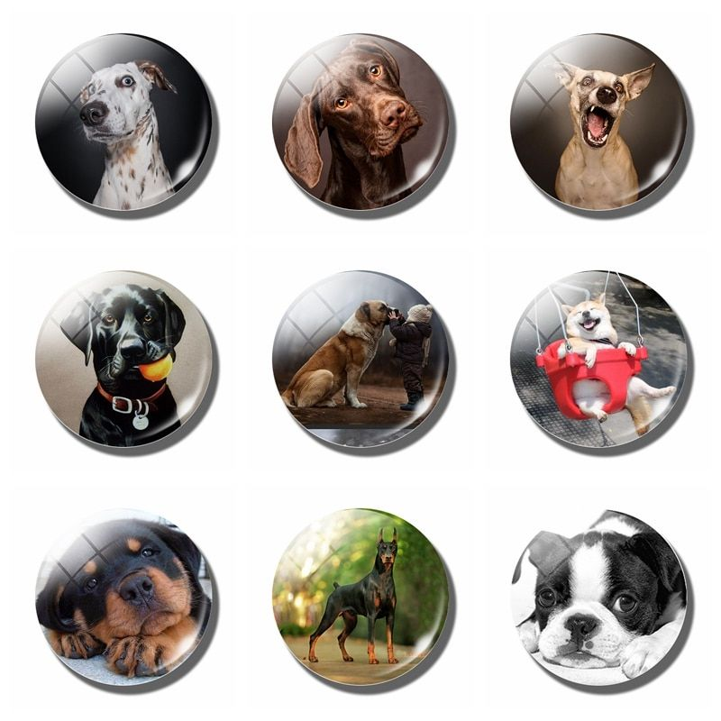 Detail Feedback Questions about Dog decorative refrigerator magnets lovely animal Lucky Cute dog 30MM fridge magnet cat Stickers message board Home