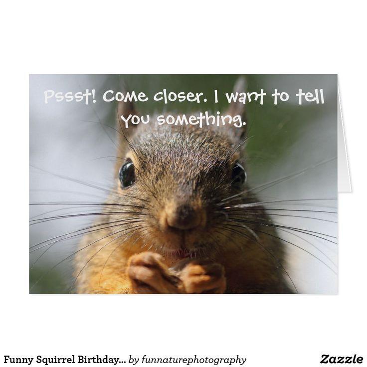 Squirrel Happy Birthday Card Lovely 11 Best Birthday Cards Funny Pinterest Squirrel Happy