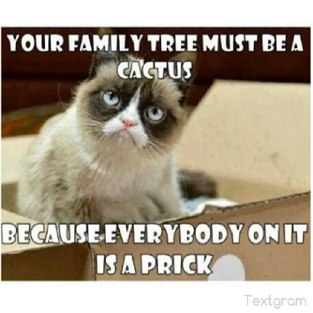 24 Hilarious Family Memes You ll Relate To