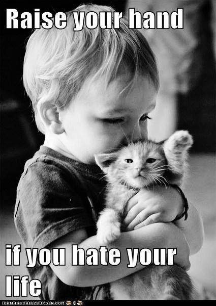 child hate hug kill me now kitten life toddler