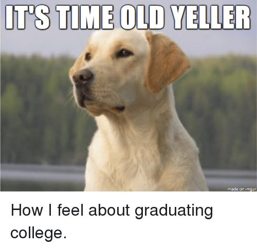 College Imgur and Time ITS TIME OLD YELLER made on imgur