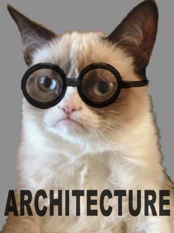 Architecture Grumpy Cat