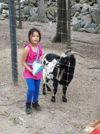 Wilson s Wild Animal Park Our fun day at Wilson s we had a great time not