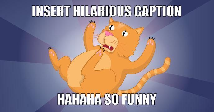 Take the Lovely Funny Cat Memes En Espanol