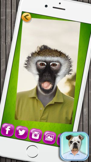 Animal Face Booth with Funny Pet Sticker s 4