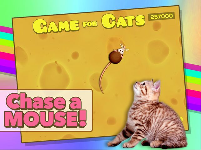 Game for Cats 9