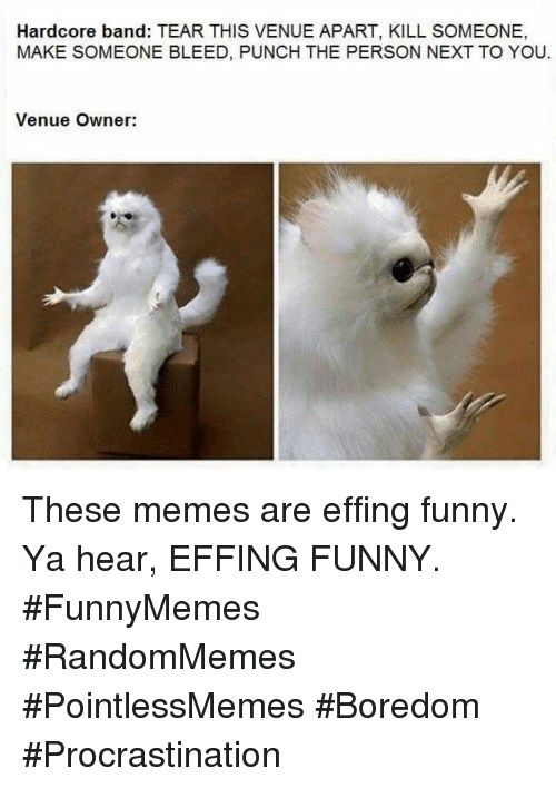 Take the Marvelous Funny Beware Of Dog Memes
