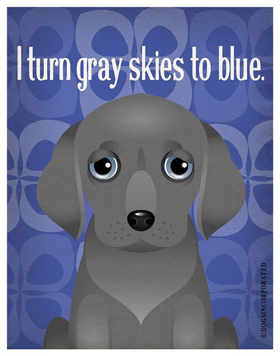 Weimaraner Funny Dogs Original Art Print by DogsIncorporated $29 00