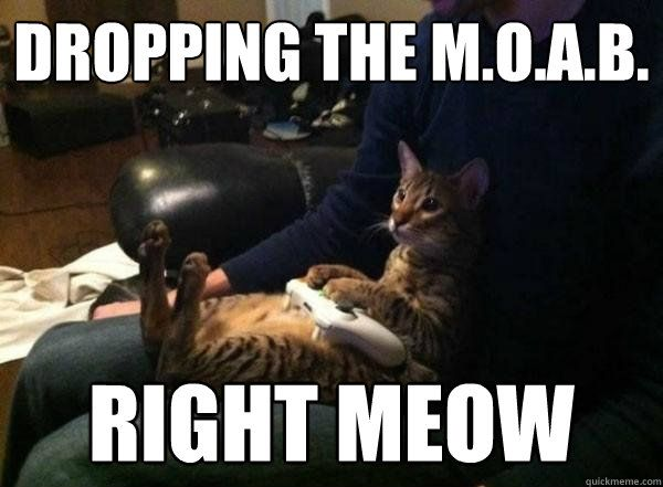 dropping the m o a b right meow dropping the m o a b right meow Gamer Cat