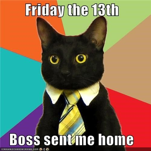 bad luck Business Cat curse friday the 13th