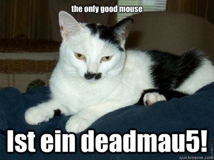Take the Prodigious Funny Cat Hitler Pictures