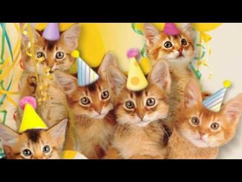 "Cute Cats Sing ""Happy Birthday"""