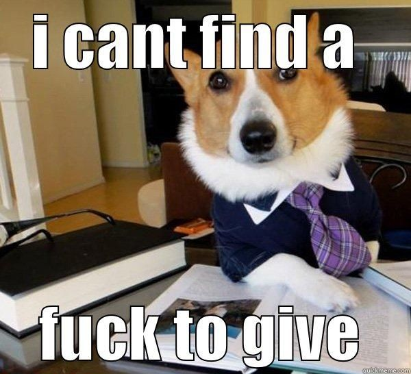 I CANT FIND A FUCK TO GIVE Lawyer Dog