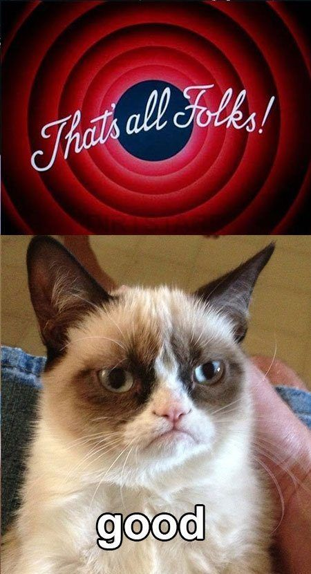 Top 40 Most Funny Grumpy Cat with captions Funny
