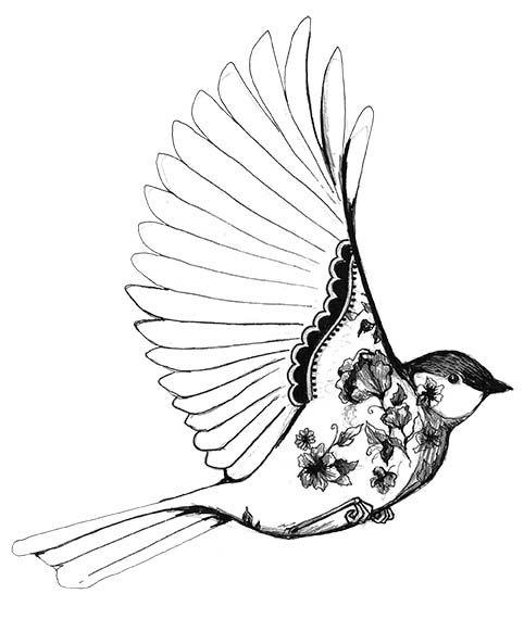 482x570 Tumblr Drawings Birds Art Bird Cute