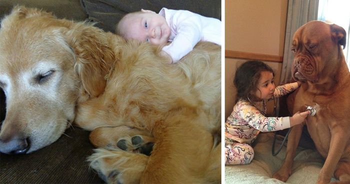 105 Adorable s Proving That Your Kids Need A Dog