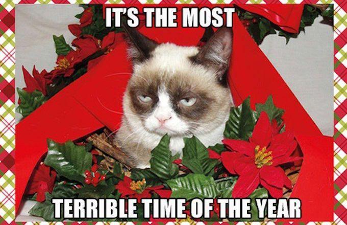 25 Hilarious Christmas Memes