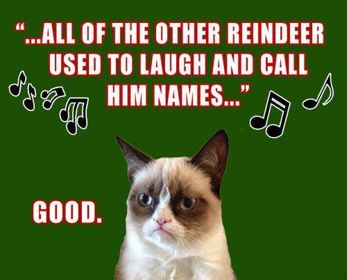 003 best Grumpy Cat memes