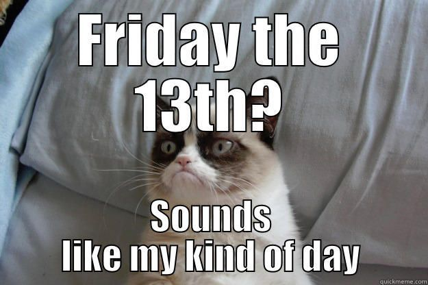 Take the Unique Friday the 13th Funny Cat Memes