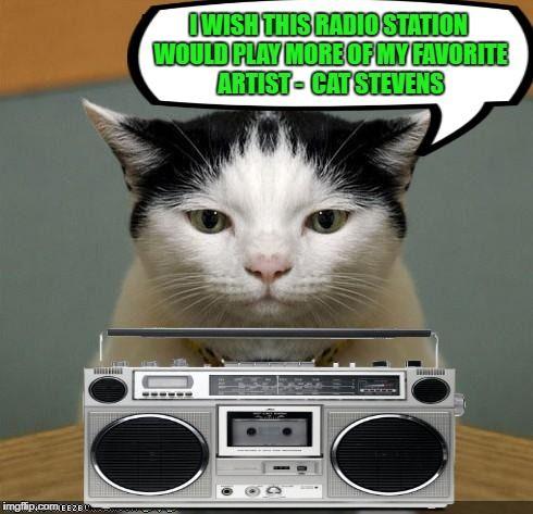 Cat Radio Music Week March 5 11 A Phantasmemegoric & the coffeemaster Event