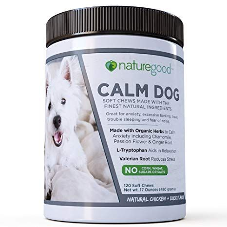 Calming Dogs with Anxiety Stress Relief for Dogs