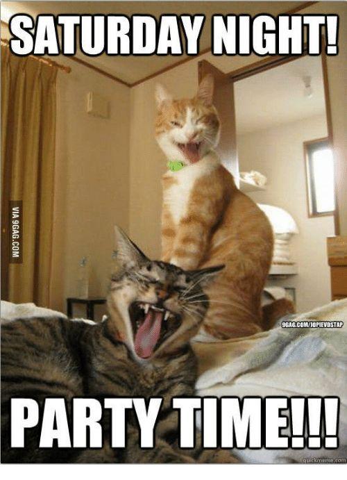 Saturday Saturday Night and Party Time Meme SATURDAY NIGHT 9GAG MIOPIEVOSTAP PARTY