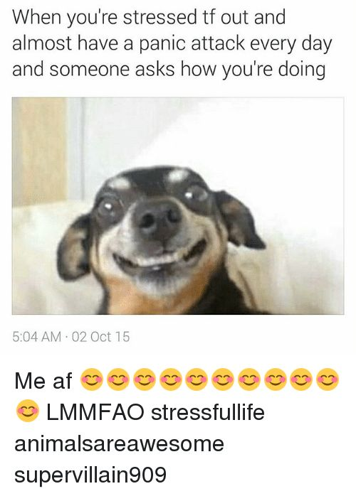 Af Dank Memes and Asking When you re stressed tf out and