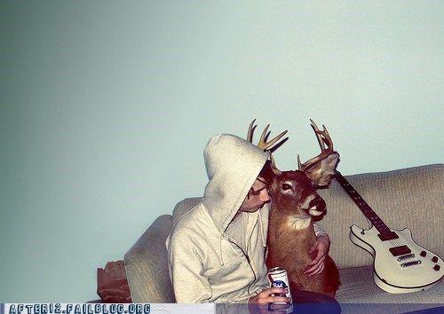 deer deer head taxidermy