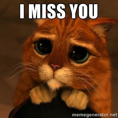 Gallery of Cool And Funny I Miss You Memes For Your Dear Partnermissing You Meme